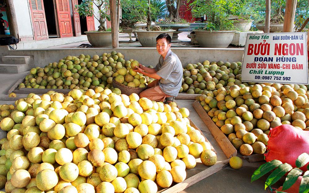 Mô hình kinh doanh ở nông thôn ưa chuộng